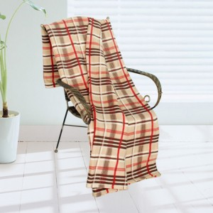Plaid throws for fall sports fans. Great style and a great price! This budget-friendly plaid fleece throw is available for only $18.99 at Sears.