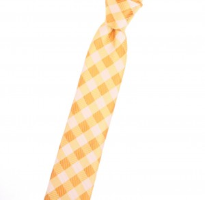 Tiecoon.com, Goldenrod  narrow tie with gingham check