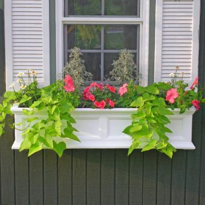 Window boxes add charming cottage style to any home!