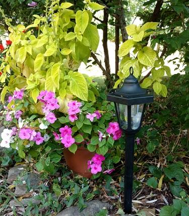 solar-garden-lantern-small-image