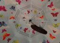 Brightman Inverted Umbrella is a amust have when skies are gray!