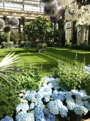 Visit the Mid Winter Blues Festival at Longwood Gardens for some serious garden inspiration!
