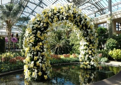 Garden inspiration: A 12-foot tall arch created of stunning orchids greets visitors at the door during the Winter Blues Festival at Longwood Gardens.